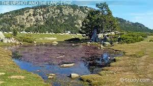 leopold u0027s a sand county almanac summary u0026 analysis video