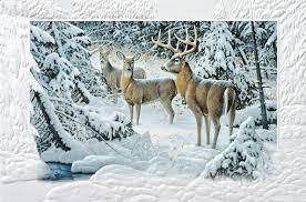 pumpernickel press wildlife cards christmas cards wildlife wildlife charity christmas cards