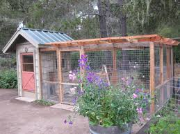 Build Backyard Chicken Coop by I Like This Chicken Coop You Can Walk In And Easily Clean Things