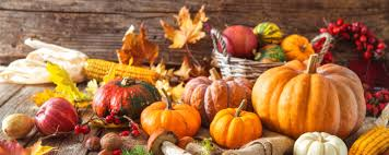 autumn 2017 best rewards credit cards for thanksgiving shopping