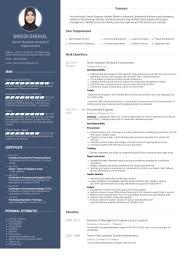 sample resume for senior business analyst senior business analyst resume samples visualcv resume samples
