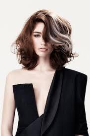 gray streak in hair the 25 best gray streaks ideas on pinterest grey hair streak
