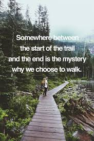 best 25 walking quotes ideas on finally happy quotes