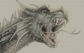 detailed dragon sketch by zapdosify on deviantart