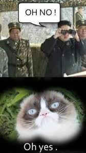 Funny Grumpy Cat Meme - 27 grumpy cat funny memes quotes and humor