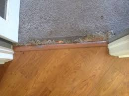 Laminate Floor Scratch Repair Repair How Do I Fix Where Cat Scratched And Tore Carpet From