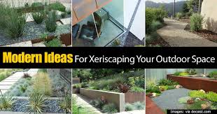 outdoor space ideas modern ideas for xeriscaping your outdoor space