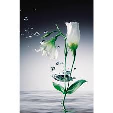 ideal decor floral wall murals wall decor the home depot crystal flowers wall mural