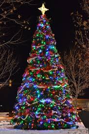 multicolor led tree rainforest islands ferry
