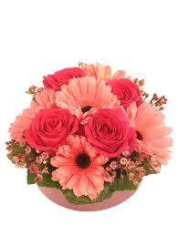 greenville florist bashful blossoms arrangement in greenville oh helen s flowers gifts