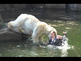 Coke Bear Meme - have a coke with a polar bear they said album on imgur