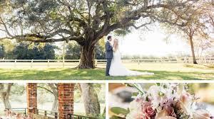 halloween city davie florida charming florida garden wedding southern living