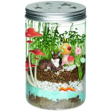 amazon com creativity for kids grow u0027n glow terrarium toys u0026 games