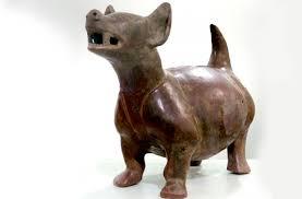 te chichi el techichi es un perro mexicano extinto dinamismo hecho noticia