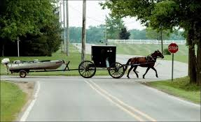 pictures of amish an amish buggy is used to pull a