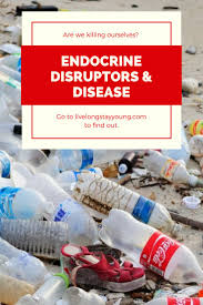 best 25 endocrine disruptors ideas on pinterest what are