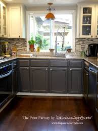 how to clean factory painted kitchen cabinets painting kitchen cabinets with wise owl one hour enamel