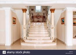 luxurious staircase with marble steps and decorative and