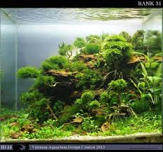 Aquascaping Guide 38 Best Aquascaping Scenery Images On Pinterest Aquascaping