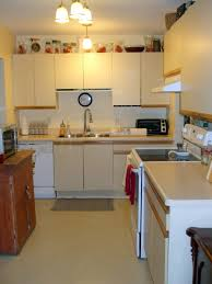Kitchen Cabinet Update Custom 10 How To Update Laminate Kitchen Cabinets Decorating