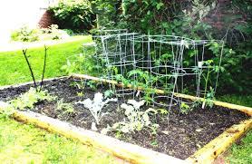 Small Vegetable Garden Design Ideas Great Small Vegetable Garden Design Ideas With Fertilizer To Grow