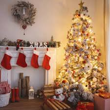 best christmas tree bold design best looking christmas tree trees real artificial