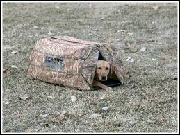 Avery Finisher Layout Blind What Is Best Dog Blind Available Archive Retrievertraining