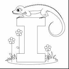 magnificent letter coloring pages viewcoloring with letter h