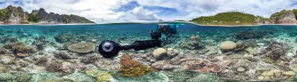underwater production for chasing coral the american society of