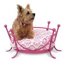 the crown metal frame dog bed