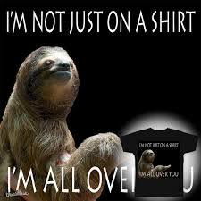 Sloth Rape Meme - score rape sloth meme shirt by s0u13dge on threadless