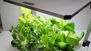 grow light indoor garden photos igloez high efficiency green energy full spectrum smd led