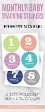 free monthly baby sticker printable applecart lane