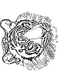 dessin à imprimer prefix tigre hugo l u0027escargot