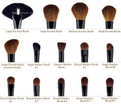 makeup brushes with best way to clean makeup brushes