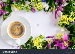 Image Of Spring Flowers by Beautiful Spring Flowers Cup Coffee On Stock Photo 634148282