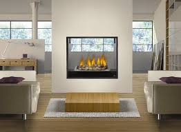 Fireplace Insert Electric Double Sided Electric Fireplace Insert Home Design Ideas Double