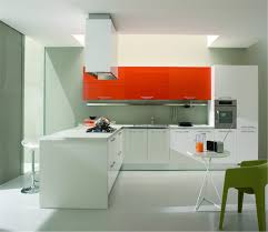 interesting kitchen cabinets color combination
