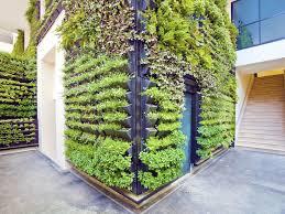 How To Build A Vertical Wall Garden by Living Walls U0026 Vertical Gardens Dr Weil U0027s Garden