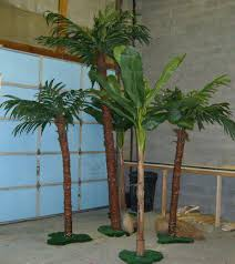 all about props palm trees to buy