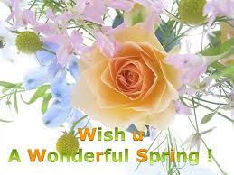 wishes for a wonderful free happy ecards greeting