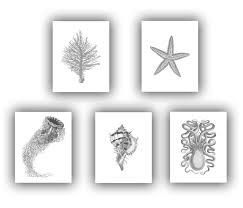 nautical prints vintage sea life inspired prints sea fan