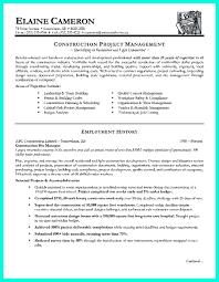 Professional Skills On Resume Project Management Skills On Resume Resume For Your Job Application