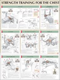 incinerate fat and build muscle with this kickass printable