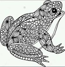 zentangle stylized cartoon frog sitting lotus flowers water