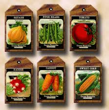 cheap seed packets buy one get one free aged vegetable seed packets vintage