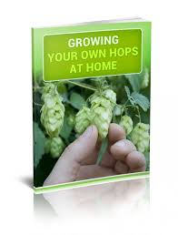 growing hops at home growing hops at home book