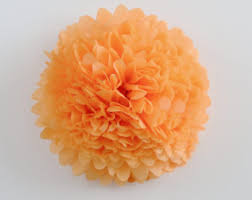 Apricot Color Apricot Tissue Paper Etsy