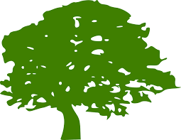 free vector graphic tree green leaves eco free image on