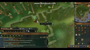 Fruit Trees Runescape - runescape 3 complete tree farming guide efficient and fastest